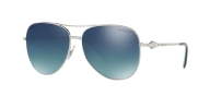 TF 3052B Silver Polarized 60014Y
